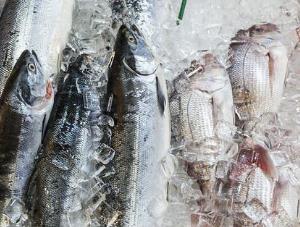 农产品批发市场严格落实进口冷链食品疫情防控要求