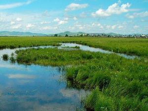 我国首次专门立法保护湿地